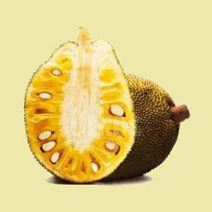jackfruit-whole-fresh-amazon