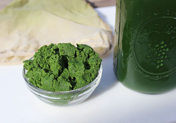 juice-fast-green-juice-pulp