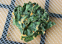 kale-chip-less-cheese