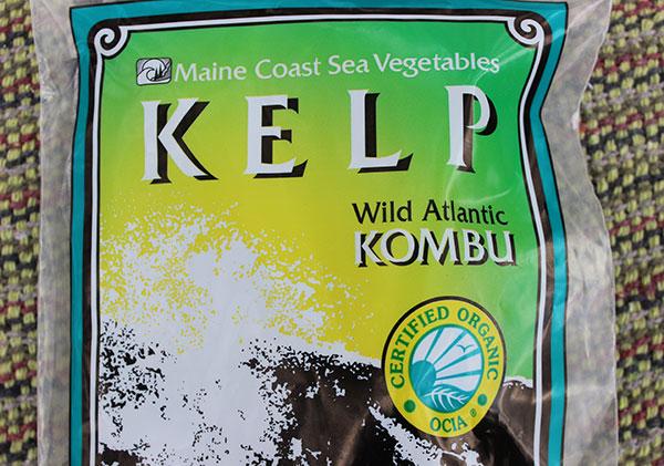 kelp-maine-coast-sea-vegetables-kombu