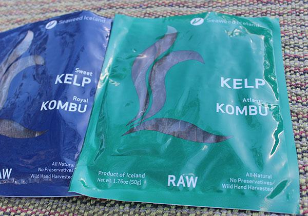 kelp-seaweed-iceland