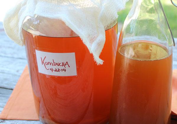 kombucha-recipe-basic