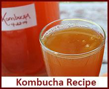 kombucha-recipe-raw-vegan-recipes