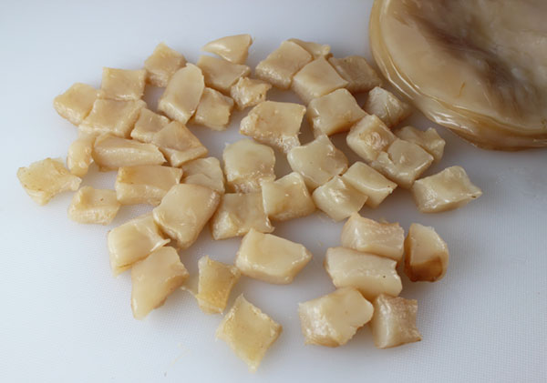 kombucha-scoby-cubes