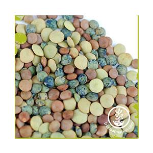 lentils-mixed-wheatgrass-kits