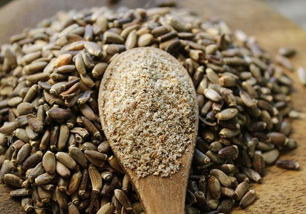 list-of-superfoods-milk-thistle-seed-powder