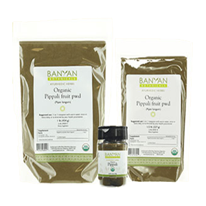 long-pepper-banyan