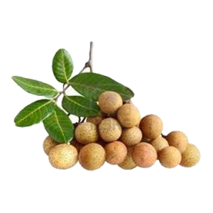 longan-fruit-fresh-3lbs