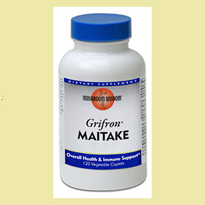 maitake-grifon-mush-wisdom-live