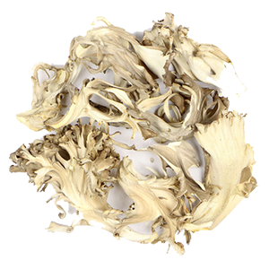 maitake-pieces-dried-mrh