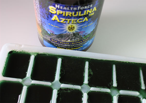 making-spirulina-ice-cubes