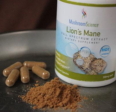 medicinal-mushrooms-benfits-extracts