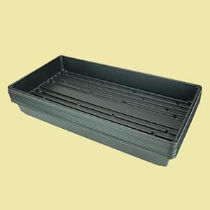 microgreens-black-trays-gm