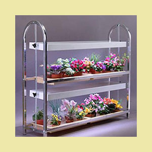 microgreens-growing-stand-2-shelf-growing-microgreens