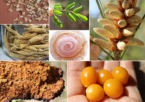 more-top-superfoods-page