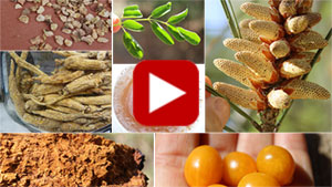 more-top-superfoods-vid