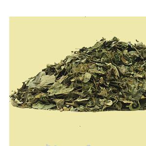 moringa-leaf-mountain-rose