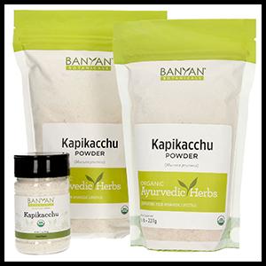 mucuna-kapikacchu-banyan-botanicals