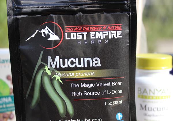 mucuna-pruriens-benefits-lost-empire-herbs