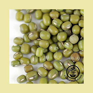 mung-bean-seeds-wheatgrass-kits