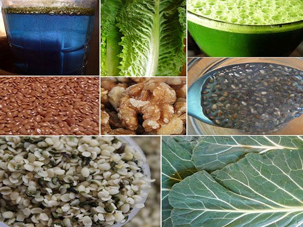 omega-3-fatty-acid-foods-collage-1