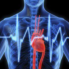 omega-fatty-acids-cardiovascular-health