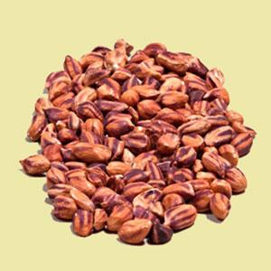peanuts-jungle-vivapura