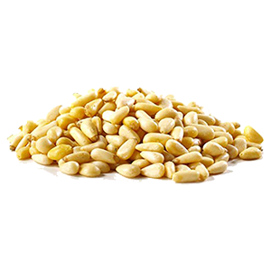 pine-nuts-organic-calif