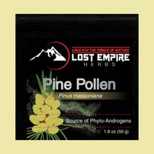 pine-pollen-lost-empire