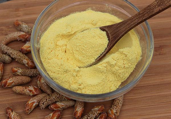pine-pollen-powder-fresh-harvested