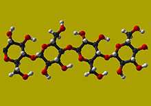 polysaccharides-page