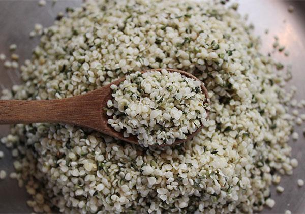 protein-rich-foods-hemp-seeds