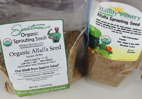 quality-alfalfa-sprouting-seed-organic