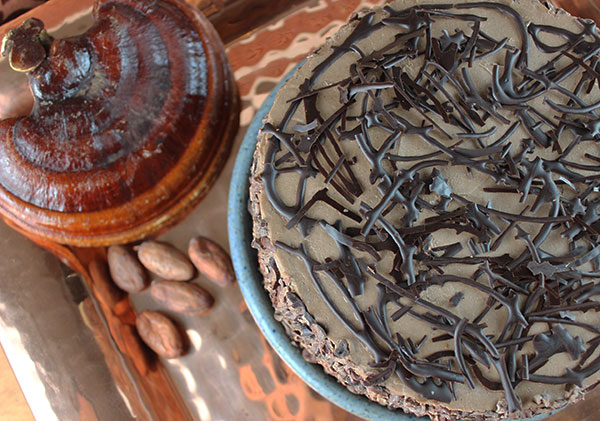 raw-chocolate-cake-recipe-using-reishi
