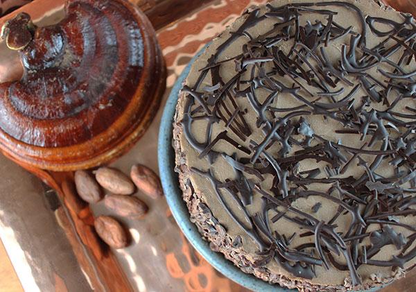 raw-chocolate-cake-recipe-using-reishi