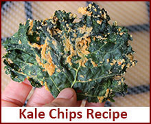 raw-food-recipes-kale-chip-recipe
