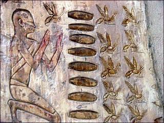 raw-honey-early-history