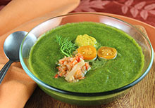 raw-soup-recipes-related-page-section
