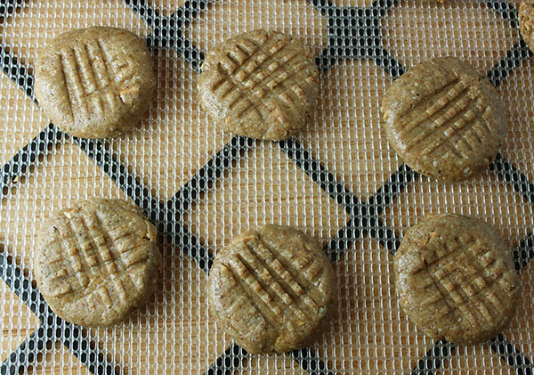 raw-vegan-peanut-butter-cookies