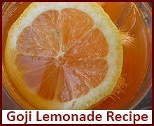 raw-vegan-recipes-goji-lemonade