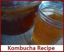raw-vegan-recipes-kombucha