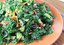 raw-vegan-recipes-page