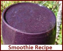 raw-vegan-recipes-smoothie