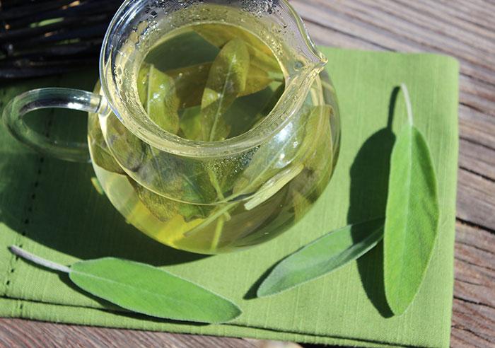 sage-tea-health-benefits