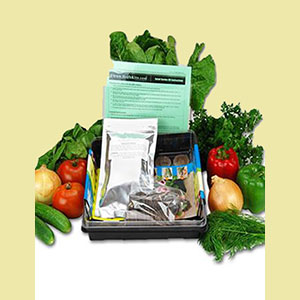 salad-garden-kit-wheatgrass-kits