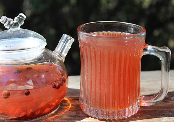 schizandra-berry-tea-decoction