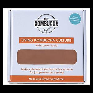 scoby-kombucha-large
