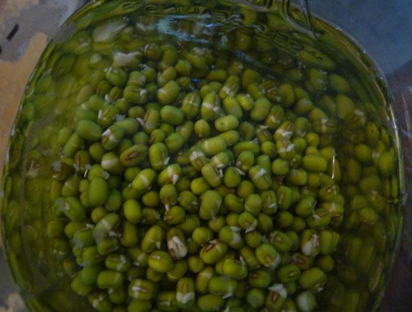 soaking-mung-beans