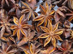 spices-and-herbs-star-anise