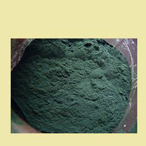 spirulina-powder-1lb-mountain-rose-herbs